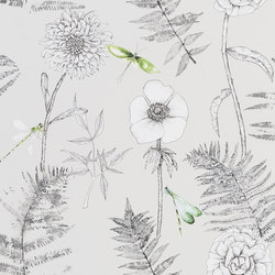 Majolica Wallpaper | Acanthus - Graphite | Wall coverings / wallpapers | Designers Guild
