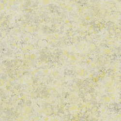 Majolica Wallpaper | Lustro - Birch | Carta da parati / carta da parati | Designers Guild