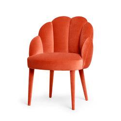 Daisy | Chair | Sillas | MUNNA