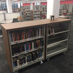 Aurora Library Carts | Carrelli | Aurora Storage