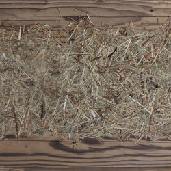 ELEMENTs Galleria Reclaimed wood hacked H3 unfinished with alpine hay and marguerite | Wood panels | Admonter