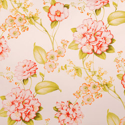Bangi | 14725 | Tessuti decorative | Dörflinger & Nickow