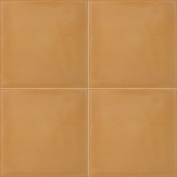 Color Palette - Caramel | Concrete tiles | Granada Tile