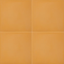 Color Palette - Mustard | Concrete tiles | Granada Tile