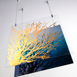 Glass Hanging Art With Gyford Wire | Picture hanging systems | Gyford StandOff Systems®