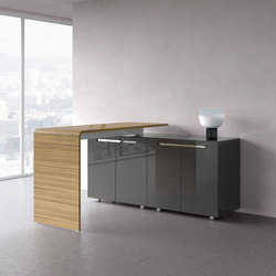 Lane stand counter | Standing tables | RENZ