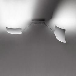 2 x 18 x 18 | Lámparas de techo | Ingo Maurer