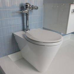 Mini Loo Wall Hung Toilet Configured for In-Wall Flushing System | WC | Neo-Metro