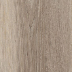 Natural Almond | Planchas | Ceramiche Supergres