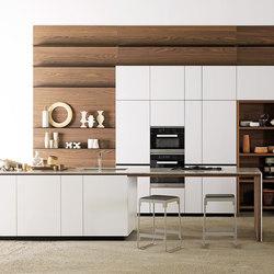 Forma Mentis | Laccato opaco bianco ghiaccio | Fitted kitchens | Valcucine