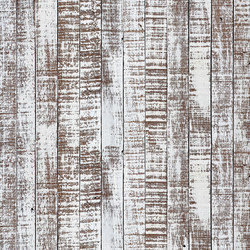Greyhound | Wall coverings / wallpapers | LONDONART