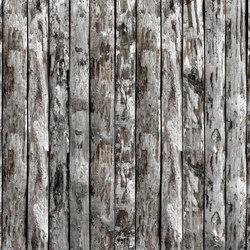 Pork Soda | Wandbeläge / Tapeten | LONDONART
