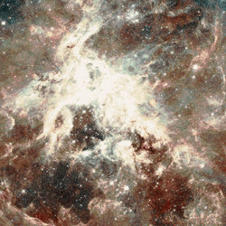Nebula | Carpet Multi | Rugs | schoenstaub