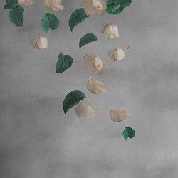 Domus I | Revestimientos de paredes / papeles pintados | Inkiostro Bianco