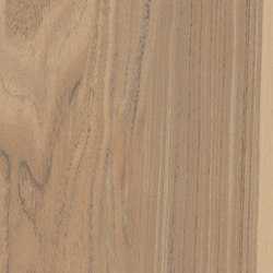 Fabula | Nucis 30x120 | Floor tiles | Caesar