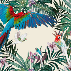 Parrots | Wall coverings / wallpapers | Inkiostro Bianco
