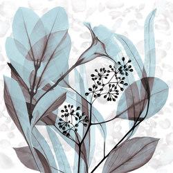 Stame | Drapery fabrics | Inkiostro Bianco