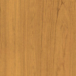 Fabula | Theca 30x120 | Baldosas de suelo | Caesar