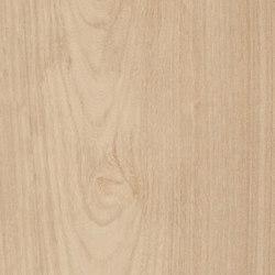 Fabula | Ulmus 20x120 | Piastrelle/mattonelle per pavimenti | Caesar