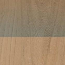 Fabula | Decor Jungle 20x120 | Ceramic tiles | Caesar