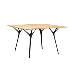 Stellarnova Table | Tavoli da pranzo | Made in Ratio