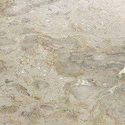 Grey | Silver Grey | Panneaux en pierre naturelle | Gani Marble Tiles