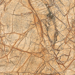 Brown | Rainforest Brown - Antique | Panneaux en pierre naturelle | Gani Marble Tiles
