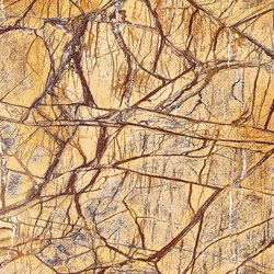 Brown | Rainforest Brown - Polished | Panneaux en pierre naturelle | Gani Marble Tiles