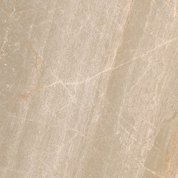Brown | Assinis Fantasia | Panneaux en pierre naturelle | Gani Marble Tiles