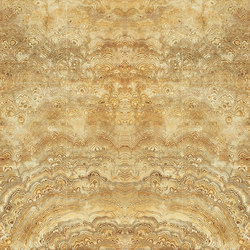 Featuring Wall | Gold Phoenix | Natural stone panels | Gani Marble Tiles