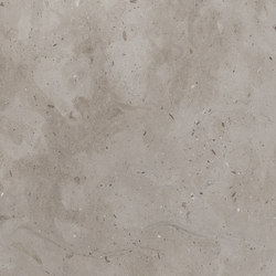 "12"" x 24"", Honed 