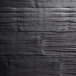 Realism - Black | Wand Furniere | Architectural Systems