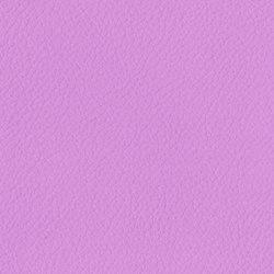 Trendy Cow | Lavender Latte | Upholstery fabrics | Anzea Textiles