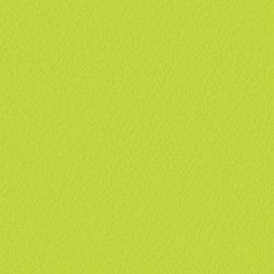 Trendy Cow | Succulents | Finta pelle | Anzea Textiles