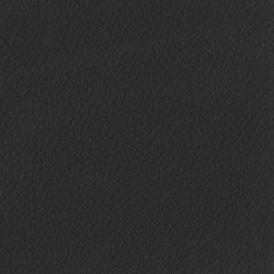 Trendy Cow | Blackout | Artificial leather | Anzea Textiles
