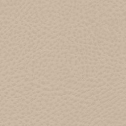 Roadster  | Fair Lady | Artificial leather | Anzea Textiles