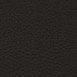 Roadster  | Black Chassis | Finta pelle | Anzea Textiles