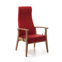 Aero_52-63/3RG | Elderly care armchairs | Piaval