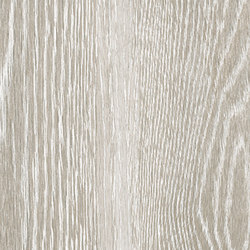 Steam wood | ash naturale | Piastrelle ceramica | Cerdisa