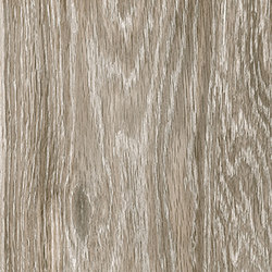 Steam wood | dove grey natural | Bodenfliesen | Cerdisa