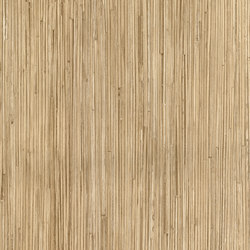 Light Wood Grains | Paneles | Architectural Systems