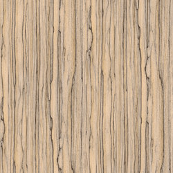 Light Wood Grains | Composite panels | Architectural Systems