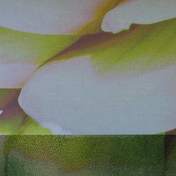 DALIA - 0003 | Tessuti decorative | Création Baumann