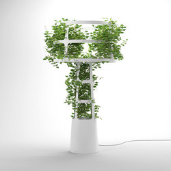 Sophie planted | Free-standing lights | lasfera