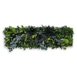 plant picture | jungle 140x40cm | Murs végétaux | styleGREEN