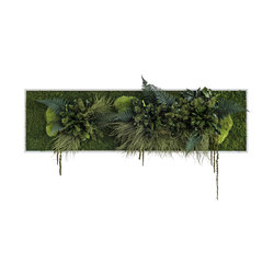 plant picture | Plant islands 140x40cm | Pareti vegetali | styleGREEN