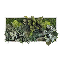 plant picture | plant islands 57x27cm | Living / Green walls | styleGREEN