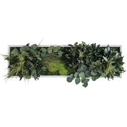 plant picture | plant islands 70x20cm | Pareti vegetali | styleGREEN