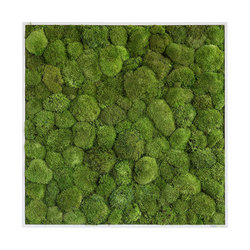 moss picture | pole moss picture 80x80cm | Living / Green walls | styleGREEN