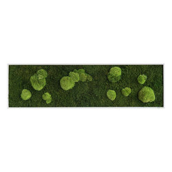 moss picture | pole and forest moss picture 140x40cm | Living / Green walls | styleGREEN
